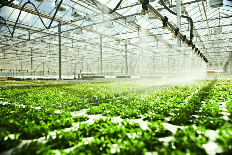 智能温室大棚价格及造价表