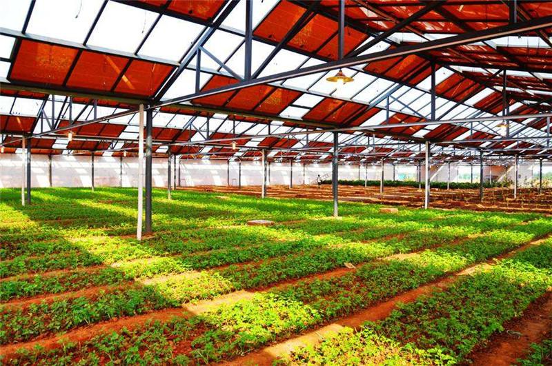 日光玻璃智能温室造价多少钱及保修年限是多少