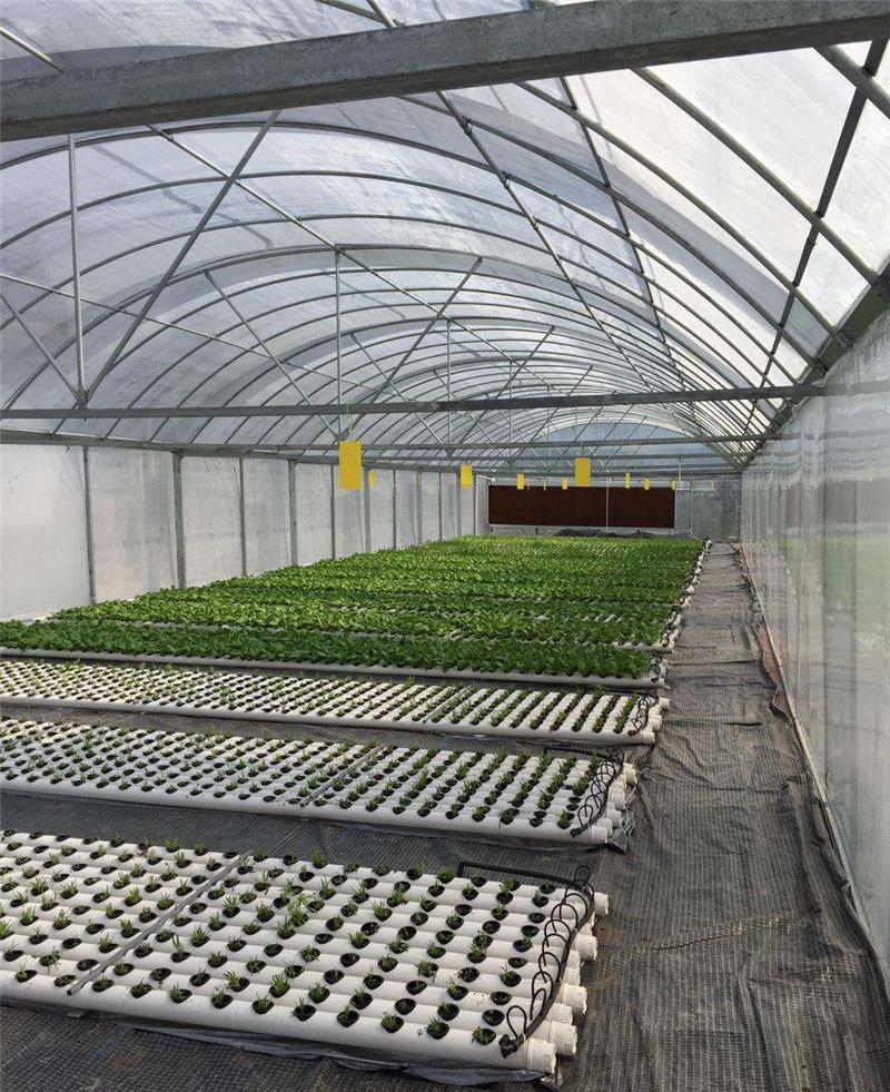 蔬菜温室大棚厂家如何解决透光保温性能